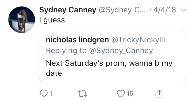 The+promposal+disaplyed+on+Twitter+was+set+up+by+Nick+when+he+texted+Sydney+to+warn+her+that+he+would+be+asking+her+to+prom+over+social+media.+%0A%0ASydney+says+her+ideal+prom+date+is+someone+who+is+going+to+be+willing+to+do+whatever+and+have+a+good+time%21