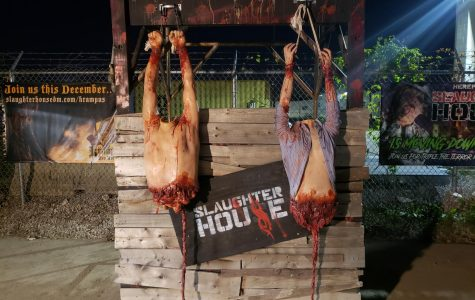 The Slaughterhouse Review