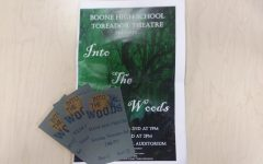 Toreador Theatre Review: Into the Woods