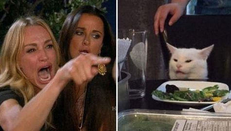 The Women Yelling at a Cat meme is very relatable. It was voted the meme of the decade by the students who surveyed.