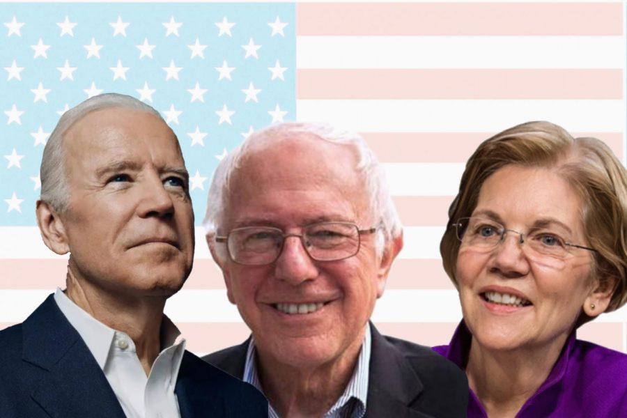 Bernie Sanders, Joe Biden and Elizabeth Warren are some of the highest polling candidates in the race.