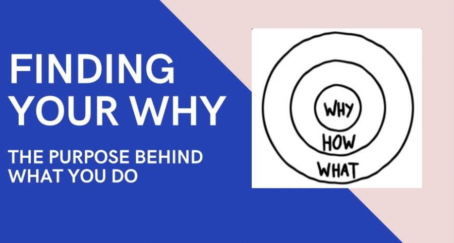 when finding your why, you need to focus on your purpose and the how you work to get to that purpose.